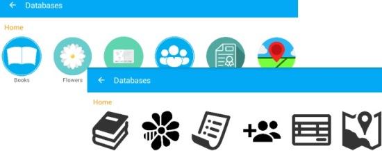 Customizable database icons